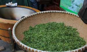 Ферментация чая от «А до Я»
