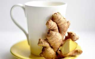 Правила приготовления имбирного чая + (ТОП 16 лучших рецептов)