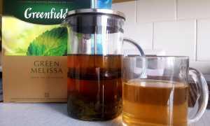 Зеленый чай с мелиссой  — двойная польза для организма