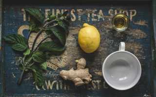Чай с имбирем для похудения: лучшие рецепты для домашнего приготовления