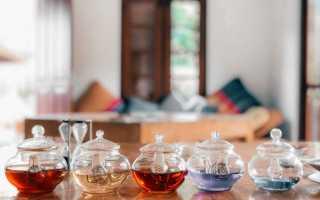Обзор стеклянных чайников для заваривания чая