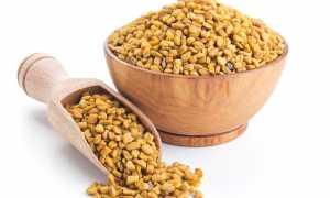 Египетский желтый чай «Хельба» — стоит дороже золота, почему?