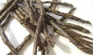 Чай кудин (горькая слеза) — волшебный напиток из Китая