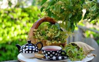 Липовый чай: полезные свойства для взрослых и детей