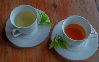 Какой же чай выбрать: черный или зеленый?