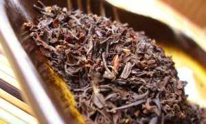 Знаменитый индийский чай «Ассам»