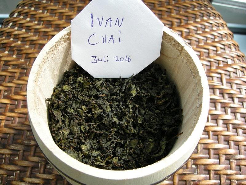 Высушенный копорский чай