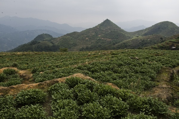Гора Гуань Инь
